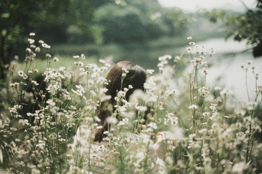 li_hui_hidden_daisy
