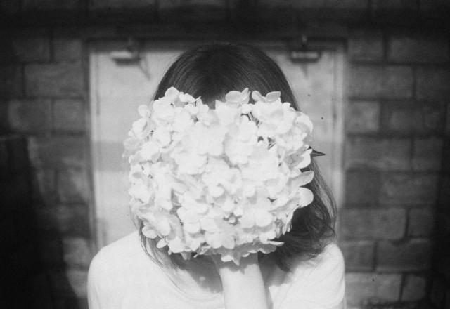 li_hui_hidden_flora