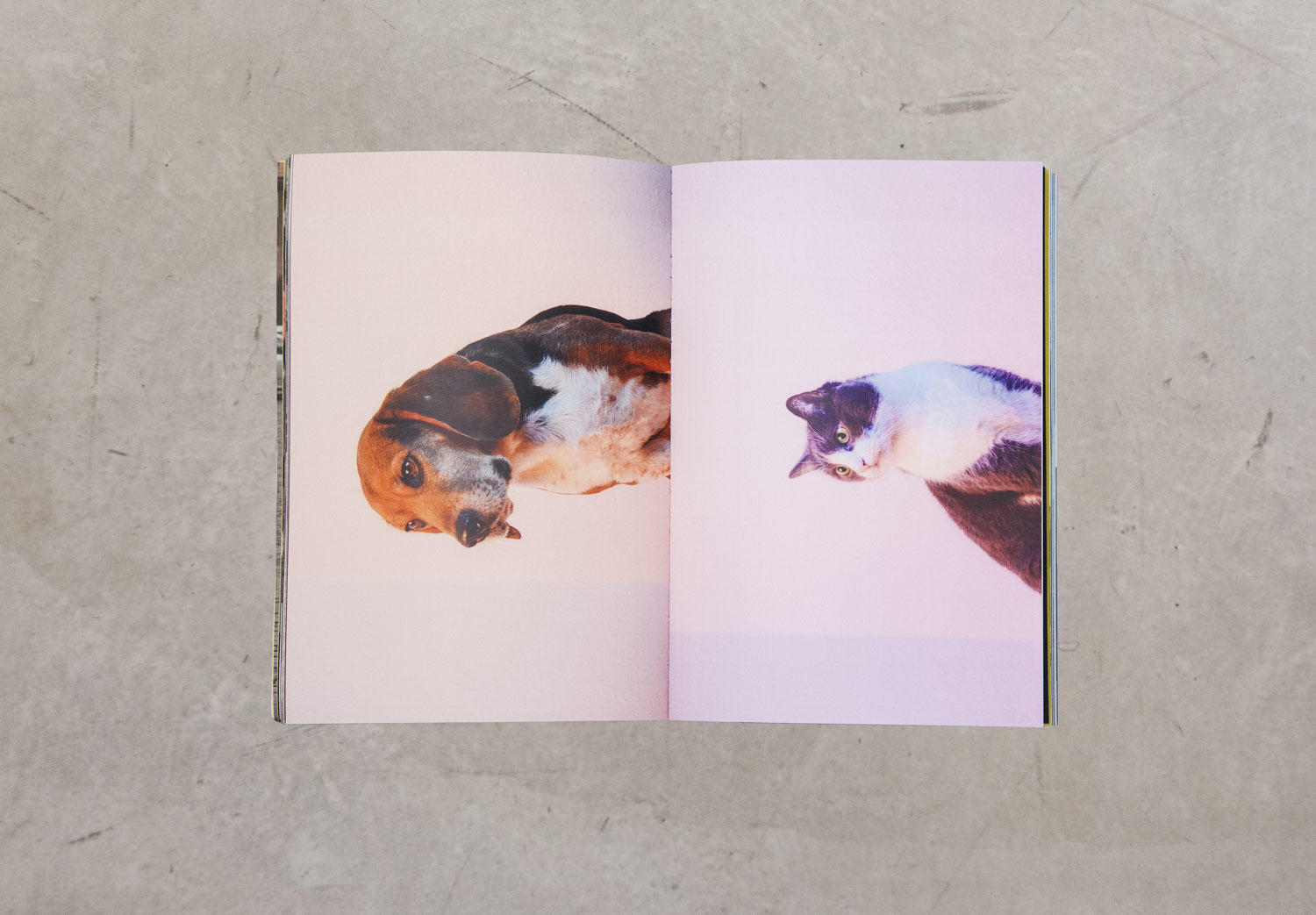 C 41 Magazine_issue2_pair_7