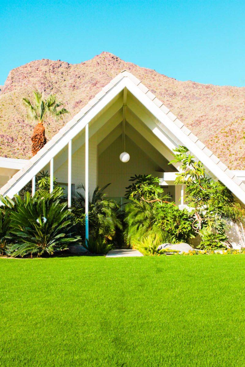 Dolly Faibyshev Palm Springs 18
