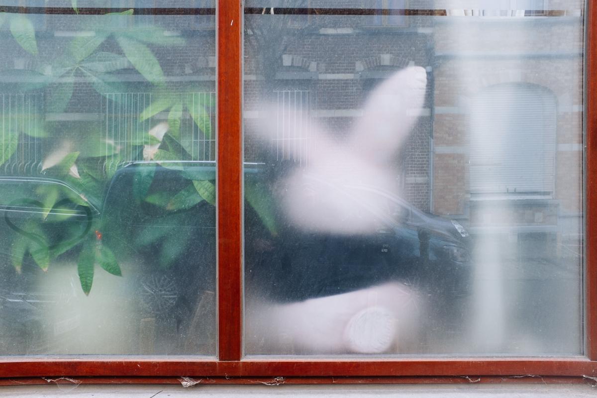 Feixa Jean Luc Public Window 08