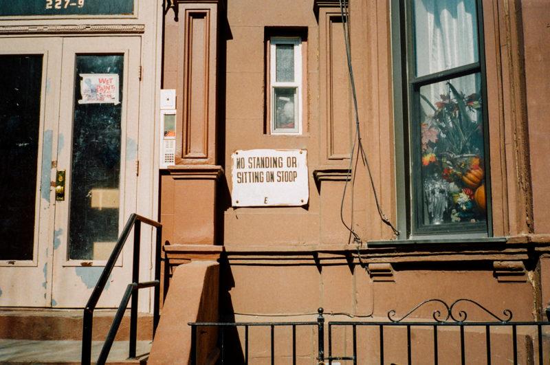 Ysa New York 07