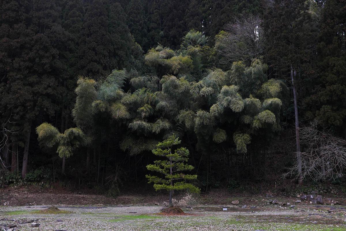 Ryosuke Takamura Hidden 14