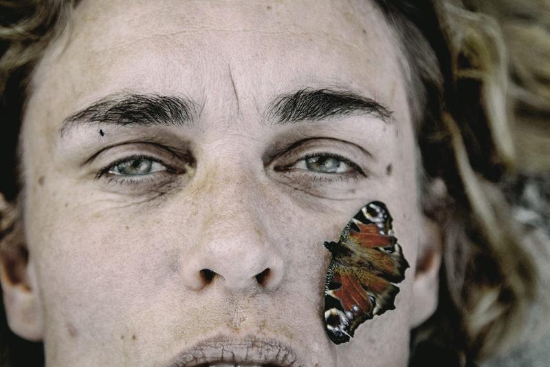 Line&Butterfly