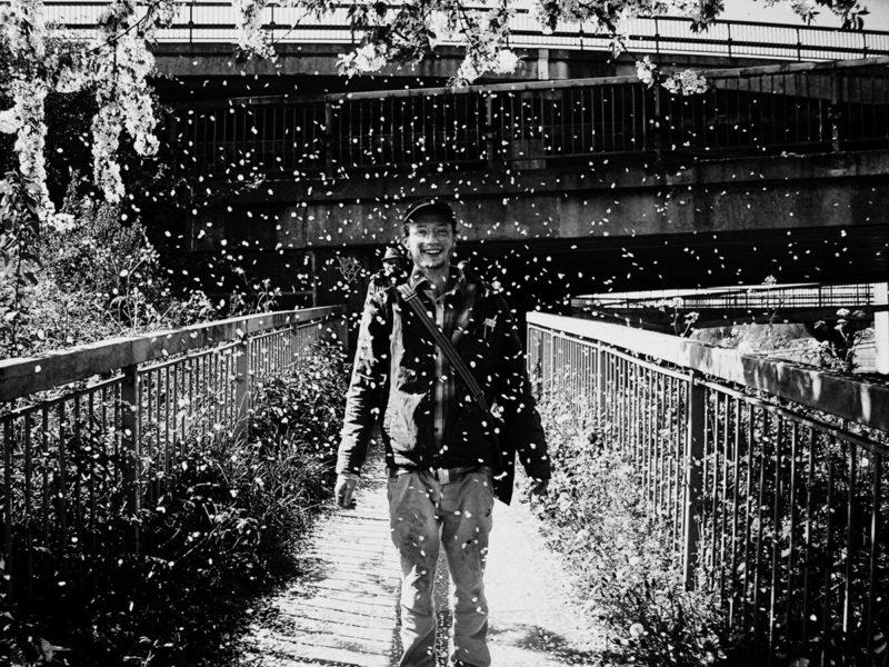 White Flower Rain1