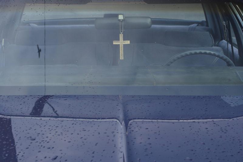 Bird Cross IMG 0324 C41