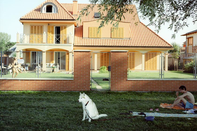 Solarski Image#6 Husky Book
