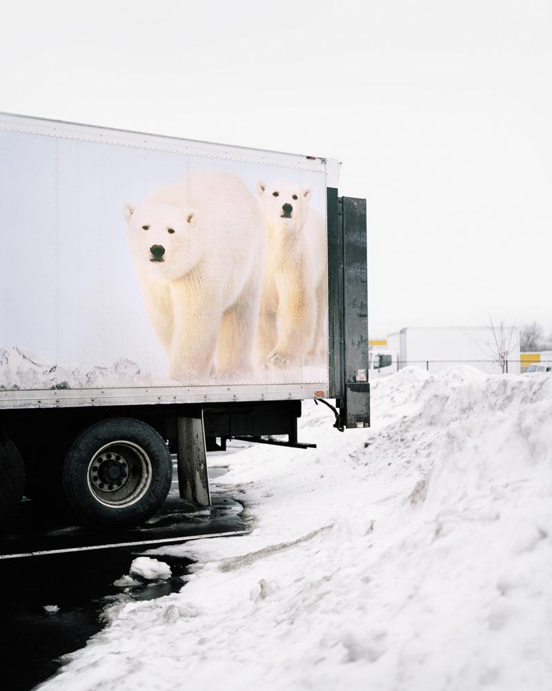 Eva Oleary 01 Happy Valley 03 Polar © Bears