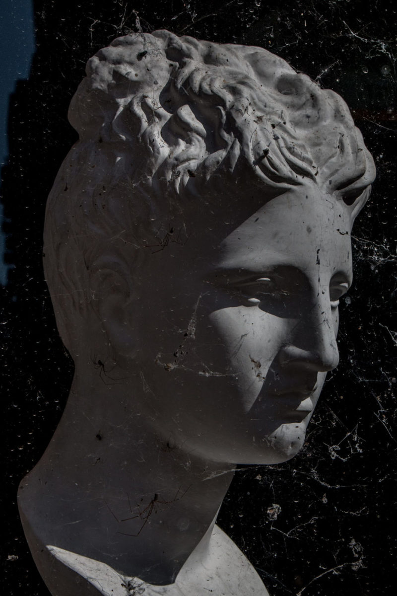 Kulczycki Romain Dèdalo 3