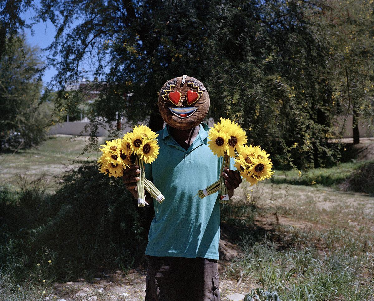 Sunflowers 001