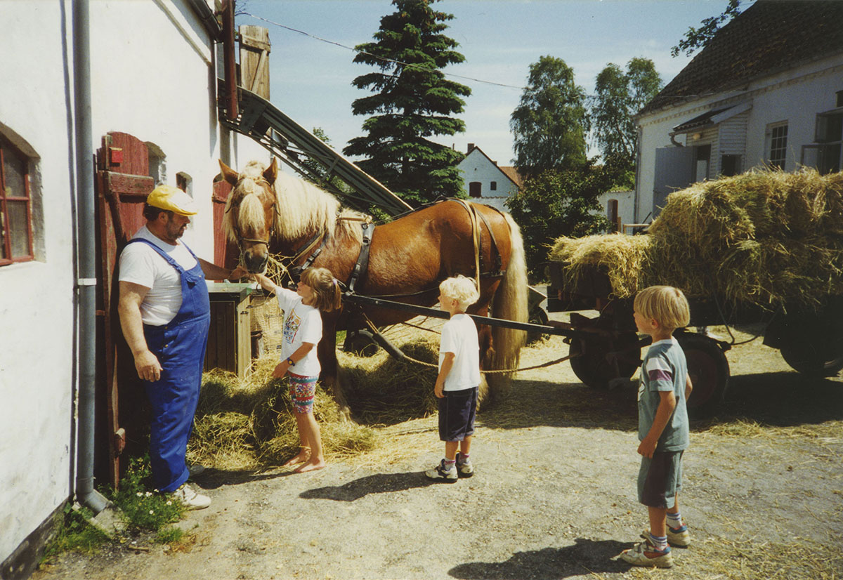 Andre Viking Family Familiar 18