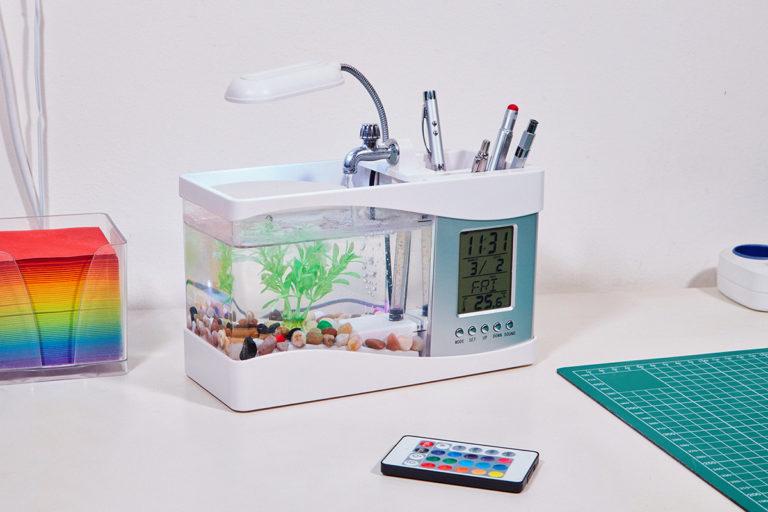 Florent Tanet exhibits the obsessive dedication in building an aquarium