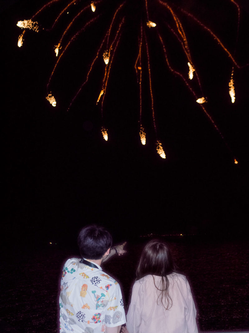 Wenkai Wang Look At Firework From The Other Side C41 Submission 50