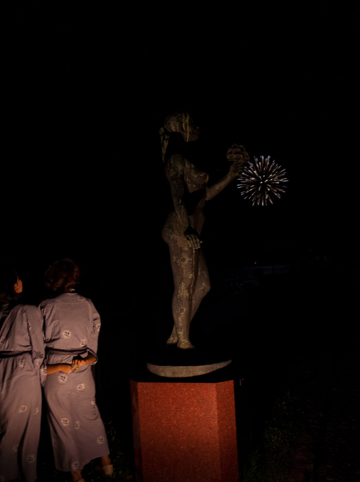 Wenkai Wang Look At Firework From The Other Side C41 Submission 52