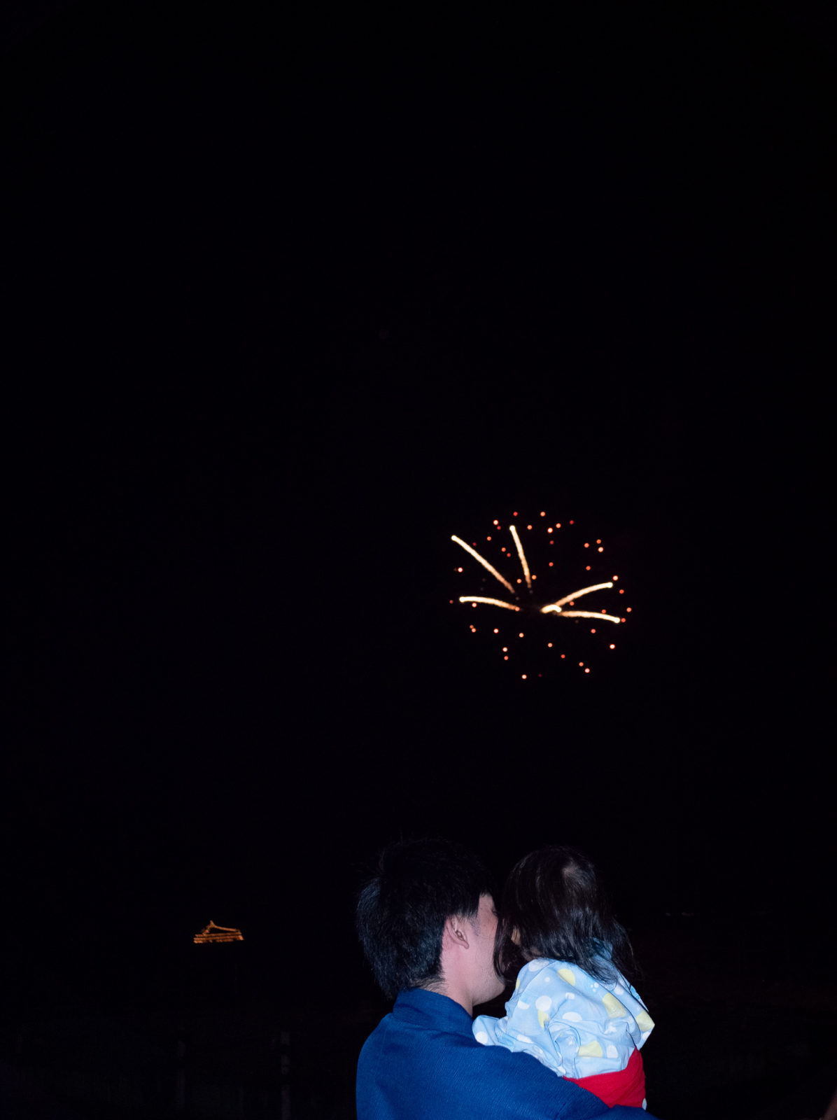 Wenkai Wang Look At Firework From The Other Side C41 Submission 53