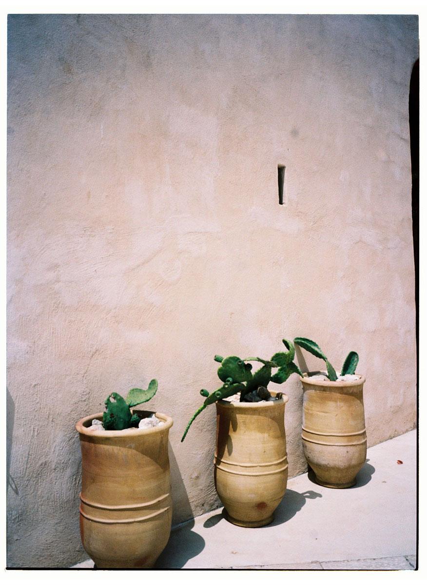 Leoni Di Sicilia Favignana C41 Experience 11