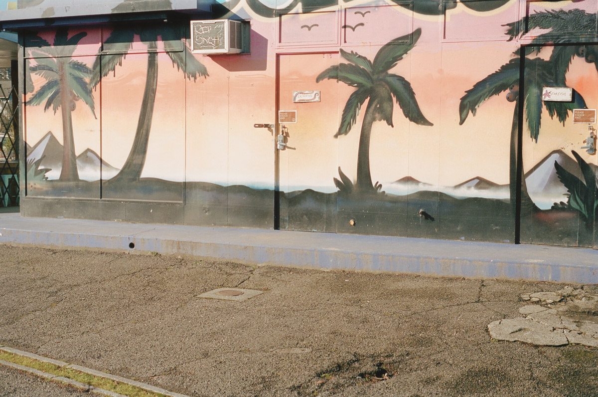 Raphael Gaultier Borealis C41 Submission 13