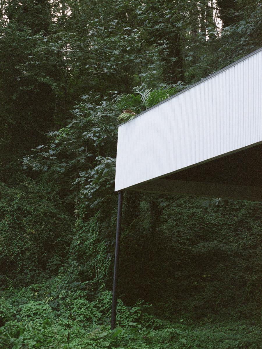 Raphael Gaultier Borealis C41 Submission 8