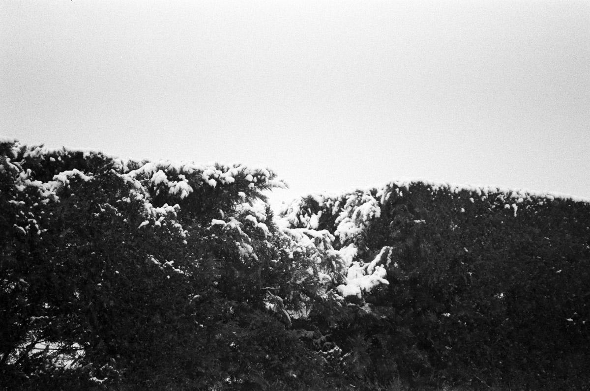 Alberto Ceresa Chronos Photography 15