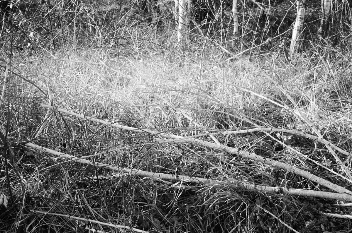 Alberto Ceresa Chronos Photography 39