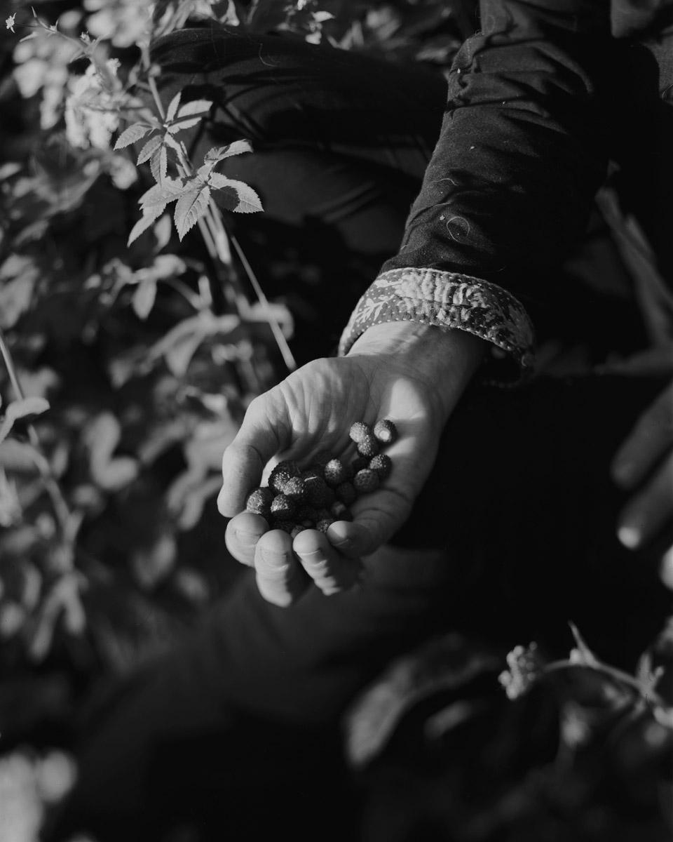 GabrieleOnere Istinto Photography 6