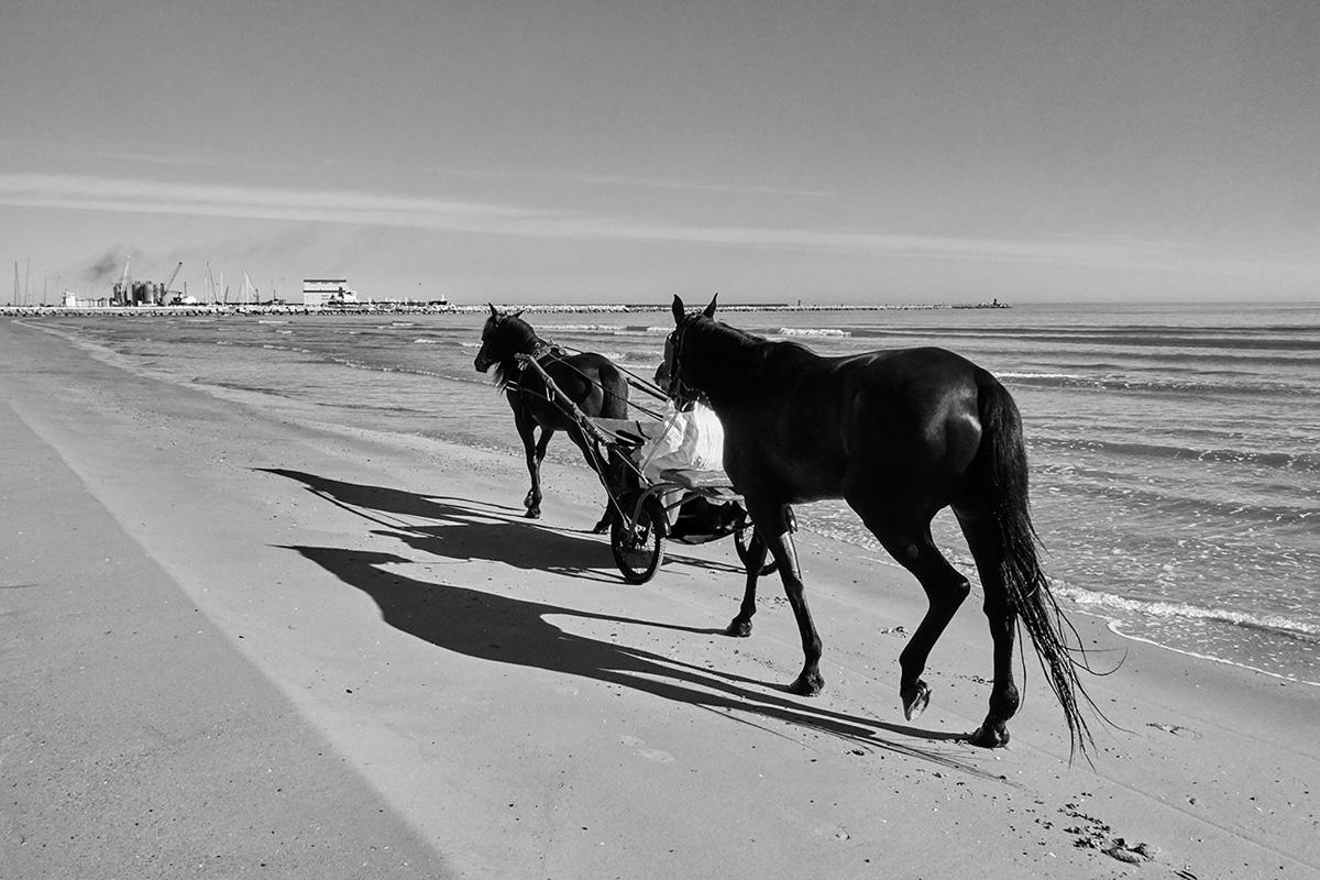 Diego Costantini Prototipo Romantico Contemporaneo C41magazine Photography 2