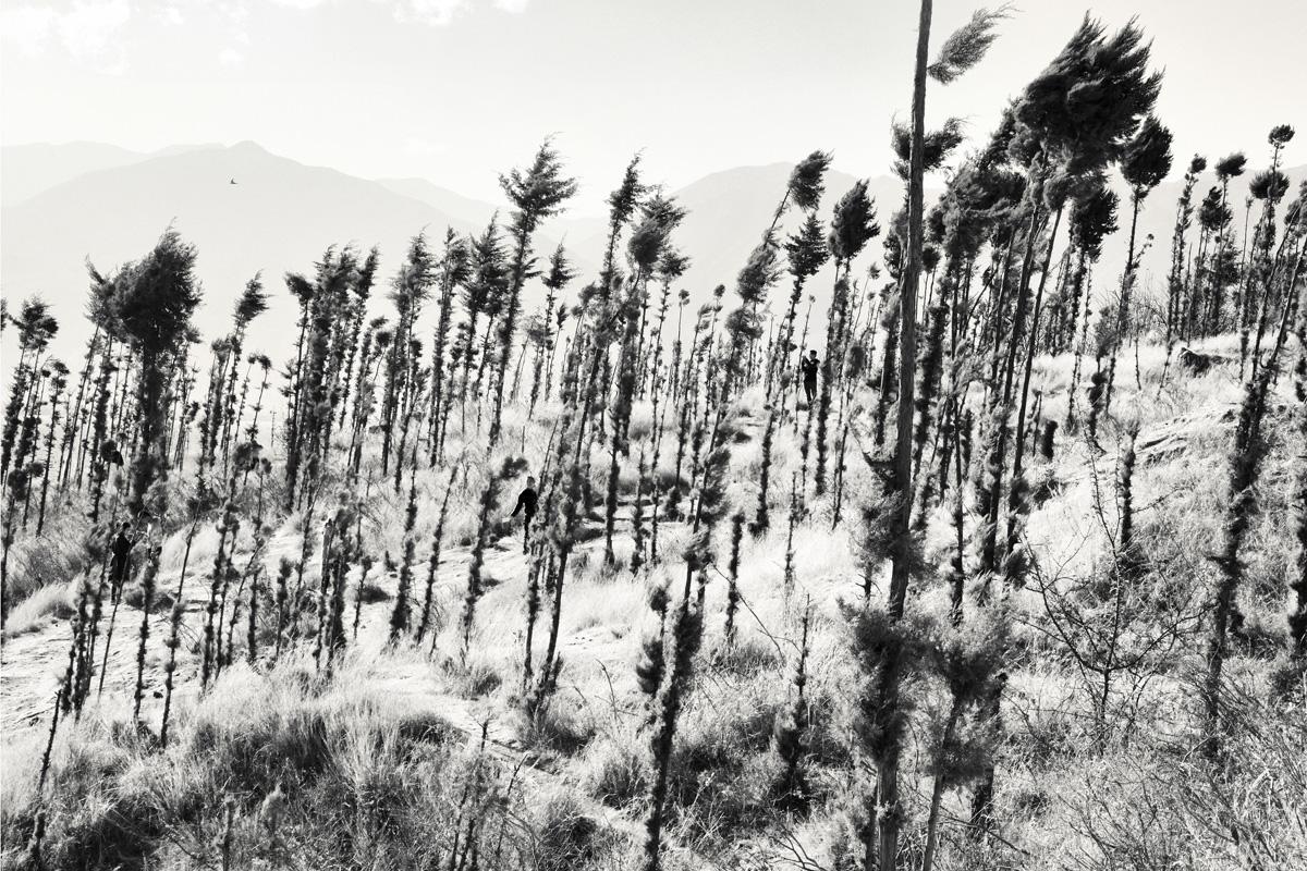 Chloé Milos Azzopardi Kind Of Ghosts C41magazine Photography 10