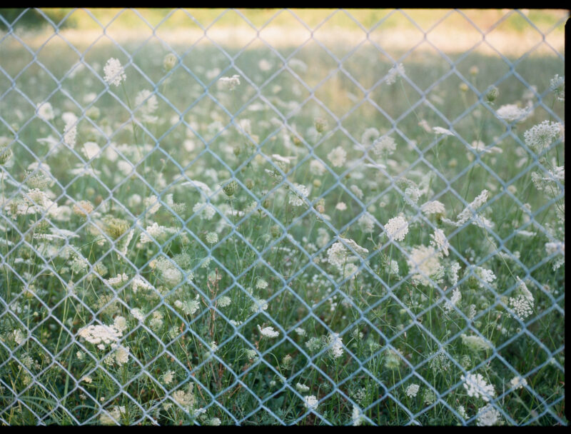 Whitney Hayes Summer Unseen C41magazine Photography 17
