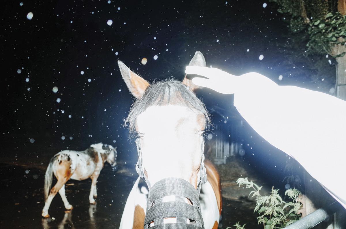 Max Slobodda Stranger Things C41magazine Photography 12
