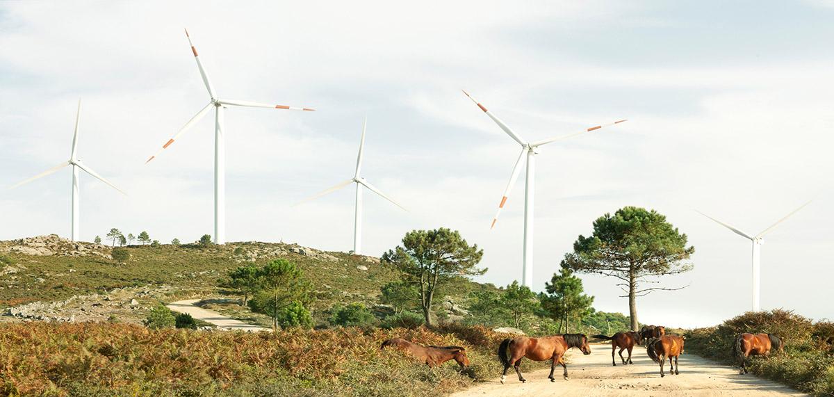 09 Eolicas Wind Farm