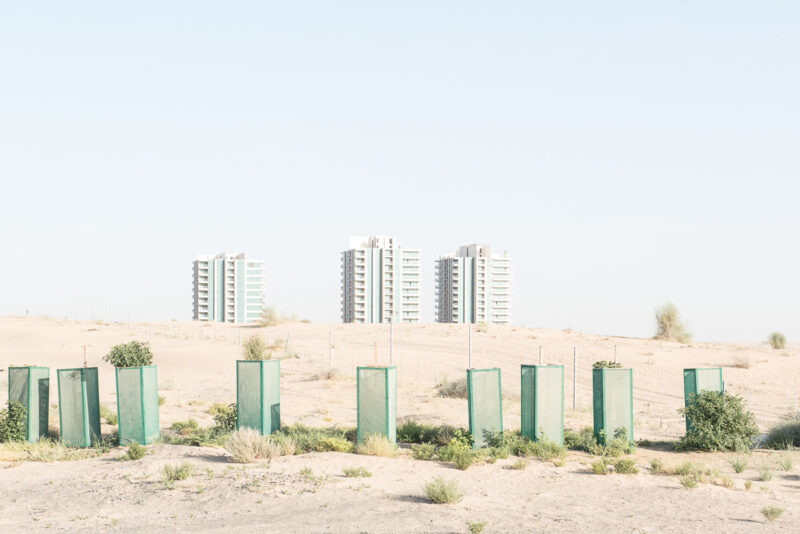 Sandra Zarneshan Are You Still Here? C41magazine Photography 20