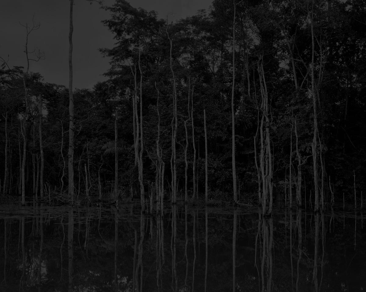Elliott Verdier Reaching For Dawn C41magazine Photography 3