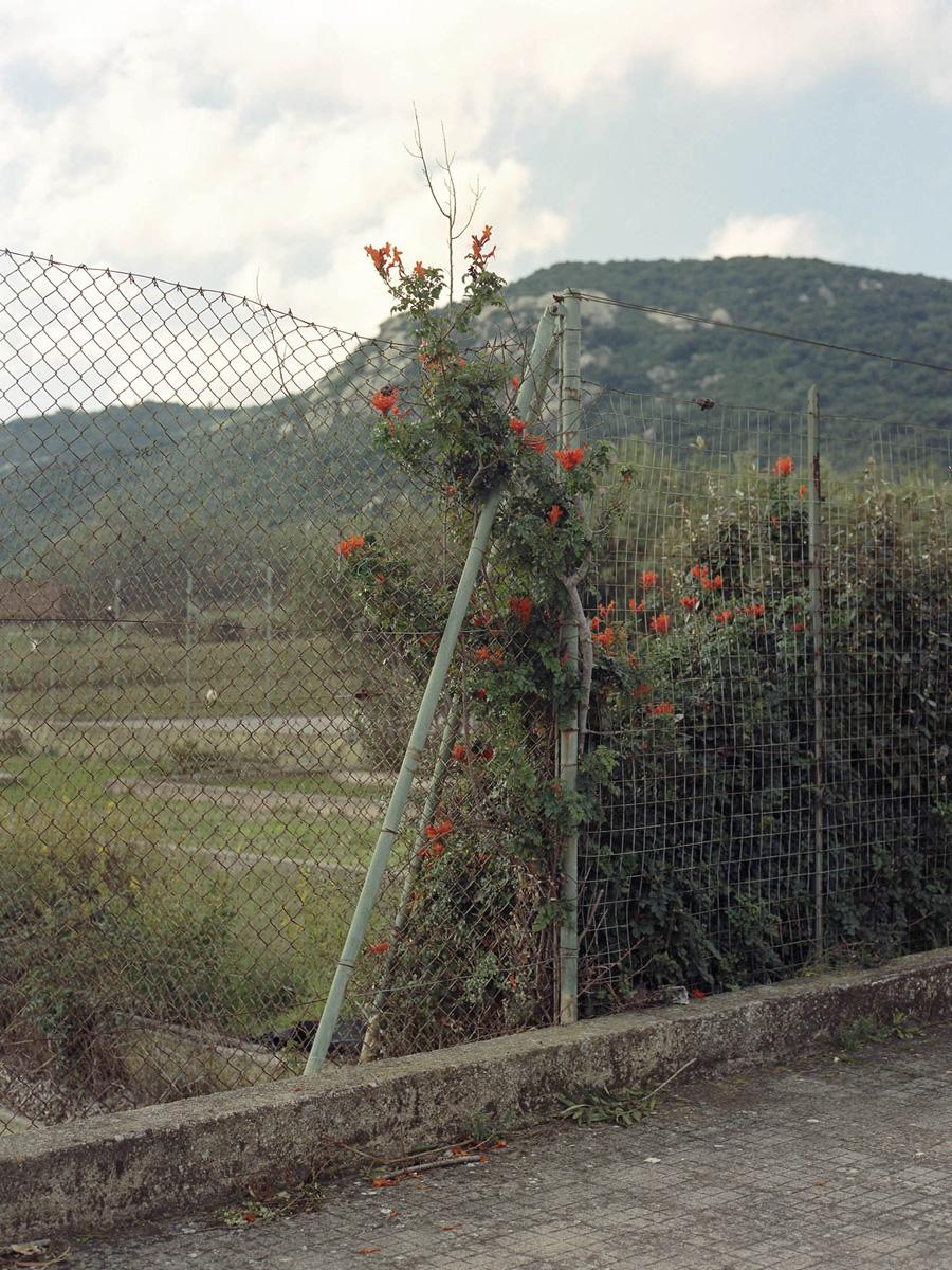 Alessio Pinna La Corrente C41magazine Photography 8