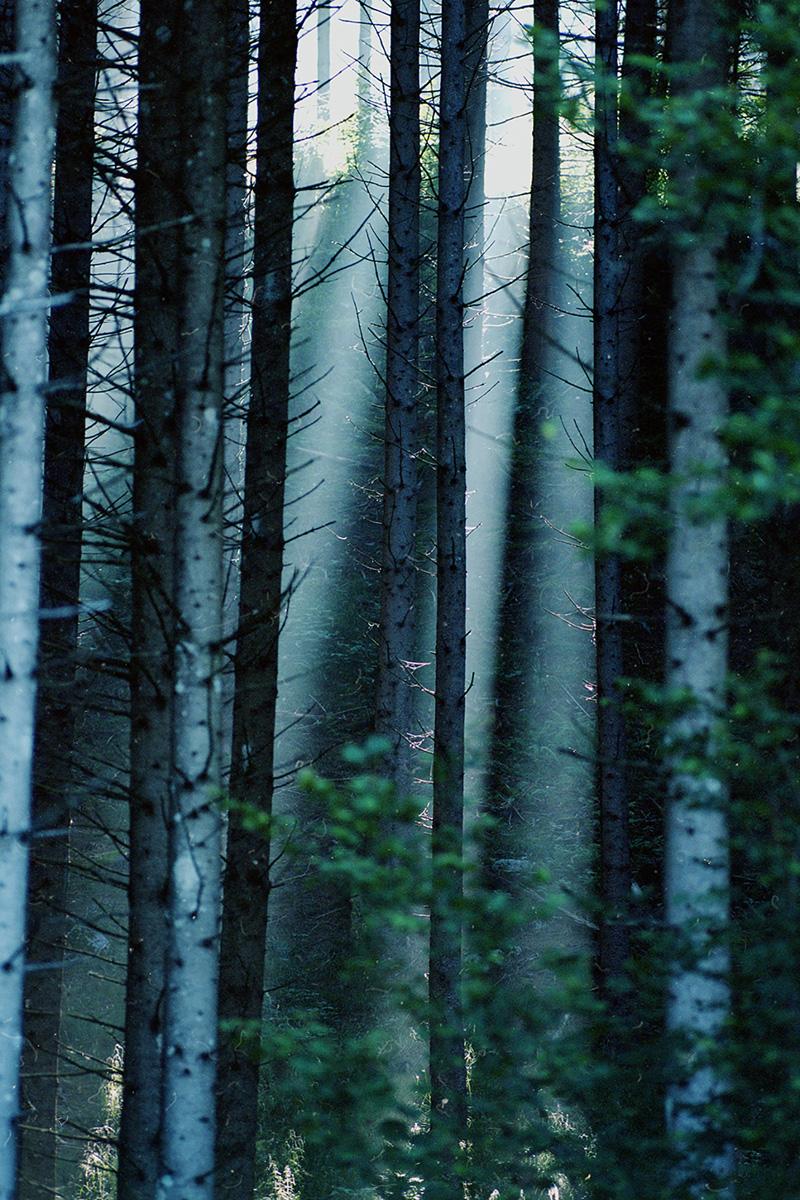 Emma Hartvig Bodies, Landscapes And Desire C41magazine Photography 14