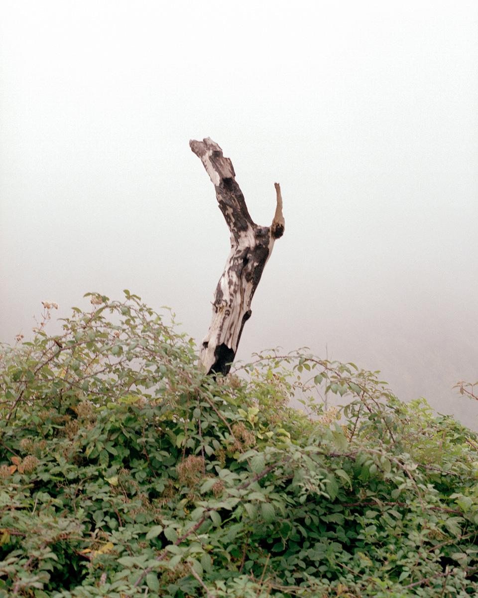 Luigi Calfa Ci Siamo Appartenuti Senza Possedere Niente C41magazine Photography 10