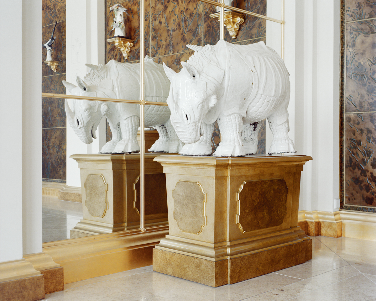 Dresden Rhino