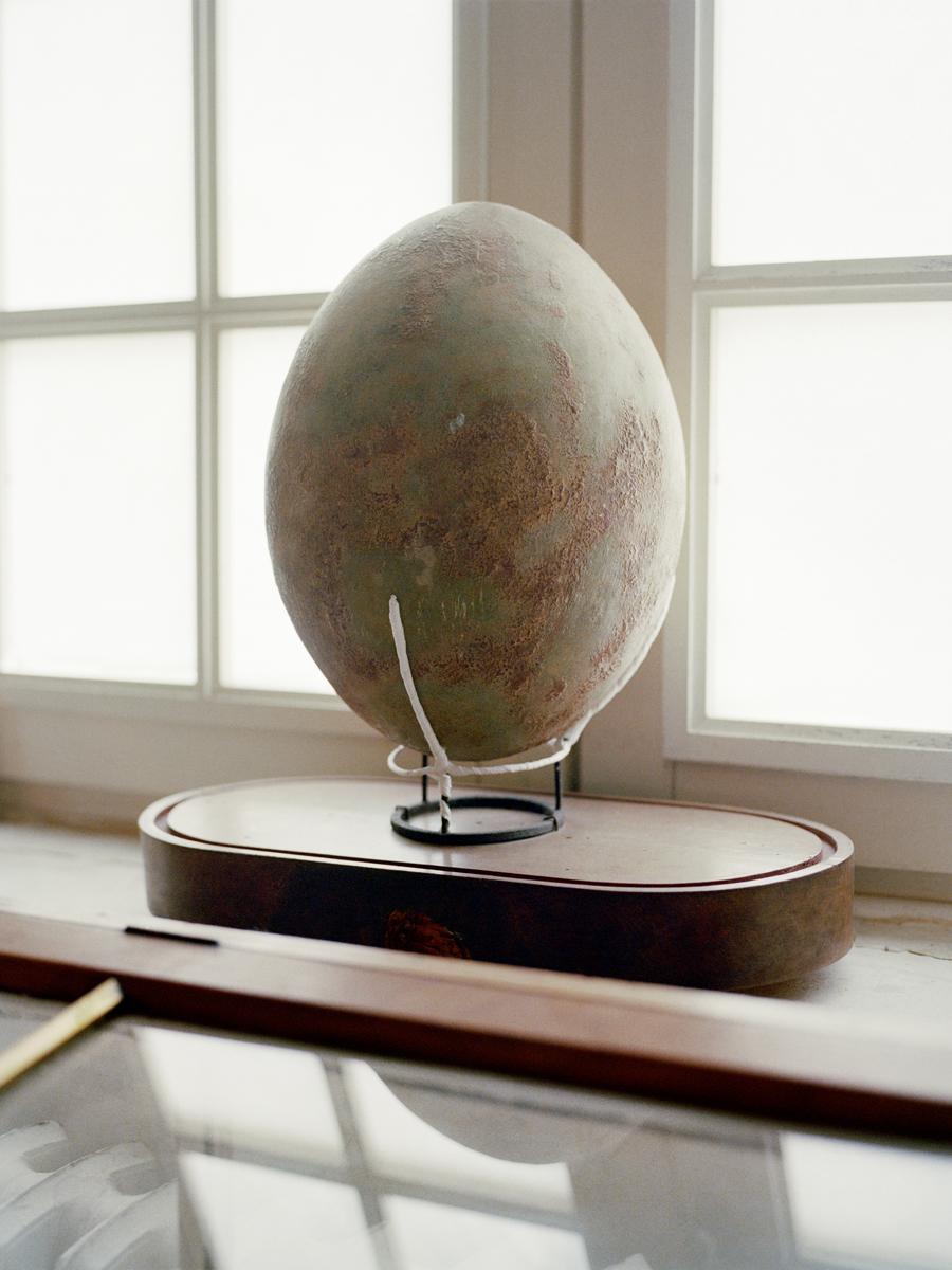 Gueret Egg